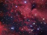The Butterfly Nebula or Gamma Cygni Nebulosity, Ici318 in Cygnus Photographic Print by Robert Gendler