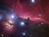 The Horsehead Nebula Region Photographic Print by Robert Gendler