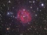 Cocoon Nebula Ic5146 Photographic Print by Robert Gendler