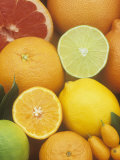 Citrus Fruits: Grapefruit, Lemon, Lime, Tangerine, Tangelo, Orange, Clementine and Kumquat Photographic Print by Wally Eberhart