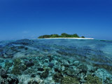 Corals in Shallow Water, Maldives, Indian Ocean, Meemu Atoll Photographic Print by Reinhard Dirscherl
