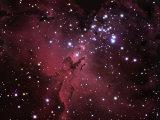 The Eagle Nebula, M16 Fotografie-Druck von Robert Gendler