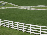 White Fence on Horse Farm, Bluegrass Region of Lexington, Kentucky Photographic Print by Adam Jones