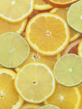 Citrus Slices. Lemon, Lime, Orange, Grapefruit and Tangerine Photographic Print by Wally Eberhart