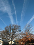 Multiple Contrails Fan Out over the Sky on a Cold Winter Morning Photographic Print by Loren Winters