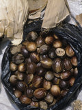 Nutmeg Sold in a Market, Indonesia Photographic Print by George Loun
