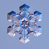 Snowflake Photographic Print by Kenneth Libbrecht