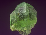 Peridot (Forsterite) Photographic Print by Mark Schneider