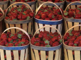 Strawberries for Sale in French Market Photographic Print by Adam Jones