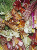 Assorted Swiss Chard Photographic Print by Ken Lucas