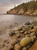 Dawn at Otter Cliffs, Acadia National Park, Maine Photographic Print by Gustav W. Verderber