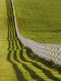 Fence and Shadow on Horse Farm at Sunset, Lexington, Ky Photographic Print by Adam Jones