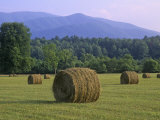 Hay Bales, Cades Cove, Great Smoky Mountains National Park, Tennessee, USA Photographic Print by Adam Jones