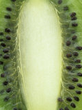 Kiwi Fruit, Actinidia Chinesis Photographic Print by Wally Eberhart