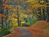 Walking Trail around Bass Lake in the Autumn, Blowing Rock, North Carolina, USA 写真プリント : アダム・ジョーンズ