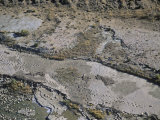 Dinosaur Tracks, Picketwire Canyon, Animas County, Co Photographic Print by Jim Wark