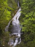 Moss Glen Falls, Stowe, Vermont Photographic Print by Robert Servrancky