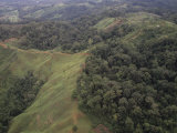 Aerial View of Deforestation of a Tropical Rainforest, Costa Rica, Central America Fotografie-Druck von Walt Anderson