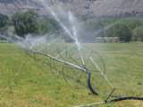 Irrigation Is Required for Agriculture in the Dry Climate of Western Colorado Fotografie-Druck von Jon Van de Grift
