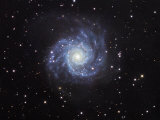 M74, Spiral Galaxy in Pisces Photographic Print by Robert Gendler