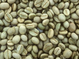 Dry Arabica Coffee Beans after Pulping and Drying, Kenya, Africa Photographic Print by Nigel Cattlin