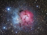 The Trifid Nebula in Sagittarius, M20 Photographic Print by Robert Gendler