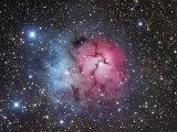 The Trifid Nebula in Sagittarius, M20 Photographic Print by Robert Gendler
