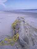 A Large Dead Shark Wrapped in Gill Net on a Beach Photographic Print by Charles McRae