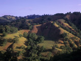 Rolling Hills of Sonoma Valley, Sonoma County, California, USA Photographic Print by Adam Jones