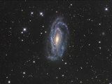 Ngc 5033 Spiral Galaxy in Canes Venatici Photographic Print by Robert Gendler