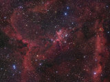 The Region of Nebula Ic1805 Photographic Print by Robert Gendler