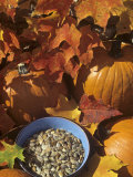 Pumpkins and Pumpkin Seeds, with Fall Leaves Photographic Print by David Cavagnaro