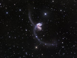 Ngc4038-4039, Interacting Galaxies in Corvus Photographic Print by Robert Gendler