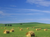 Hay Bales and Rolling Hills of Palouse Farm Country in Eastern Washington, USA Photographic Print by Adam Jones