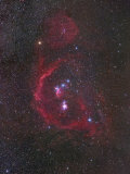 The Constellation of Orion or the Hunter and its Nebulosity Photographic Print by Robert Gendler