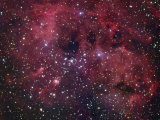 Ic410 Emission Nebula in Auriga Photographic Print by Robert Gendler
