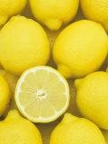 Lemons (Citrus Limon), Eureka Variety Fotografisk trykk av Wally Eberhart