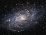 Spiral Galaxy in Triangulum, M33 Photographic Print by Robert Gendler