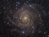 The Spiral Galaxy Ic342 in Camelopardalis Photographic Print by Robert Gendler