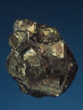 Pyrite Crystals, Tsumeb Mine, Namibia, Africa Photographic Print by Mark Schneider