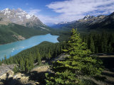Peyto Lake, Banff National Park, Alberta, Canada Photographic Print by Adam Jones