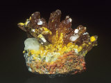 Orpiment with Calcite Photographic Print by Mark Schneider