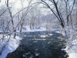 Snowy Forest Scene Along the Blue River, Indiana, USA Photographic Print by Adam Jones