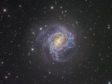 The Southern Pinwheel Spiral Galaxy M83 Photographic Print by Robert Gendler