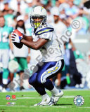 Darren Sproles Photo