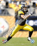 Troy Polamalu Photo