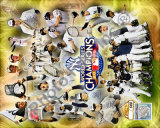 New York Yankees 2009 World Series Champions Photo