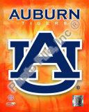 Auburn University Tigers Team Logo Photo
