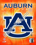 Auburn University Tigers Team Logo Photo