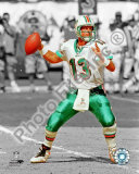 Dan Marino Photo